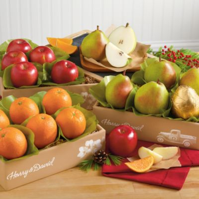 Triple Treat® Fruit Classic