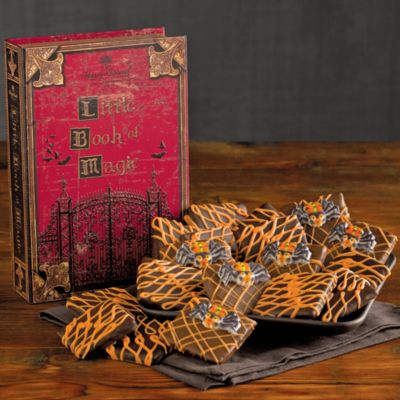 Halloween Chocolate Grahams Book of Spells