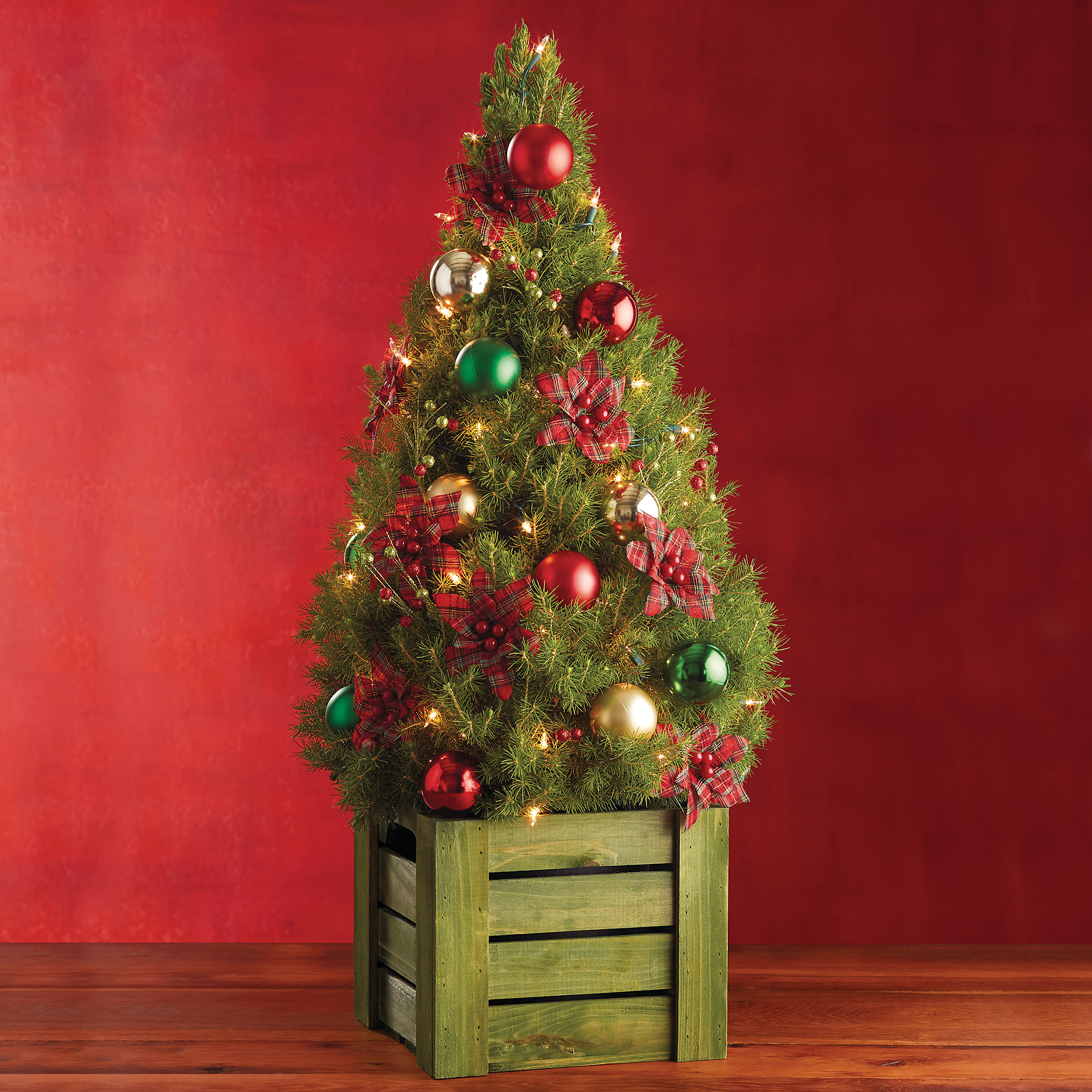 Red Plaid Mini Christmas Tree Real Trees Delivered
