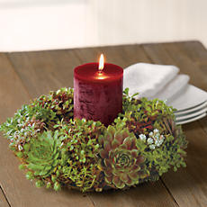 Succulent Holiday Centerpiece