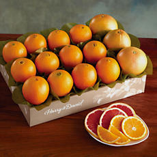 Navel Oranges and Grapefruit