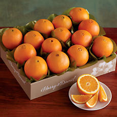 Light Christmas Citrus Club