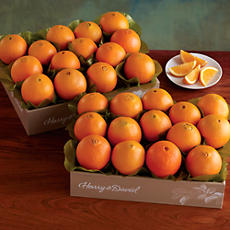 2 Boxes of Navel Oranges
