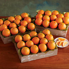 3 Boxes of Navel Oranges