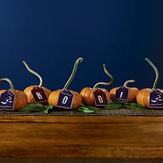 Mini Pumpkin Decorating Kit