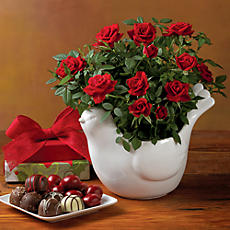Red Mini Roses and Chocolates