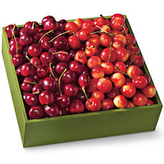 Cherry Oh! and Rainier Cherries