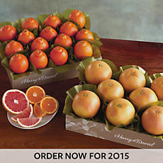 Cushman's® HoneyBells and Red Grapefruit - Two Trays