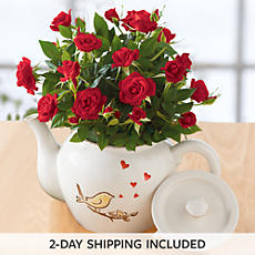 Mother's Day Mini Rose Teapot