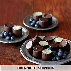 NEW Chocolate Covered Blueberries - One Dozen