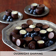 NEW Chocolate Covered Blueberries - Two Dozen