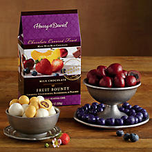 Milk Chocolate-Covered Fruit Medley