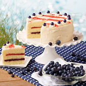 Red, White and Blueberry Cake