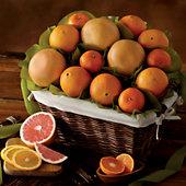 Sunny Citrus Gift Basket