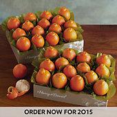 Cushman's Florida HoneyBells - 2 Box