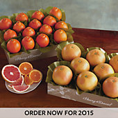 2 Boxes of Cushman's HoneyBells/Red Grapefruit