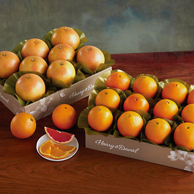 2 Boxes of Navel Oranges and Grapefruit