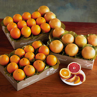 3 Boxes of Navel Oranges and Grapefruit
