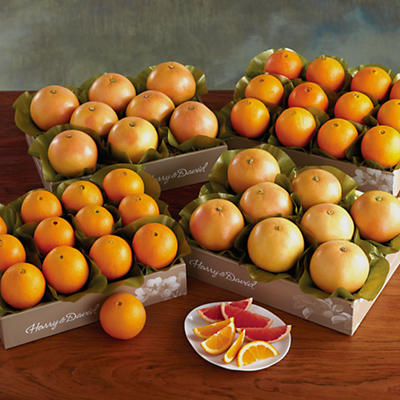 4 Boxes of Navel Oranges and Grapefruit
