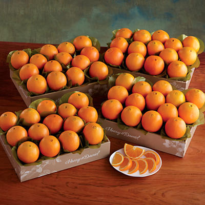 4 Boxes of Navel Oranges
