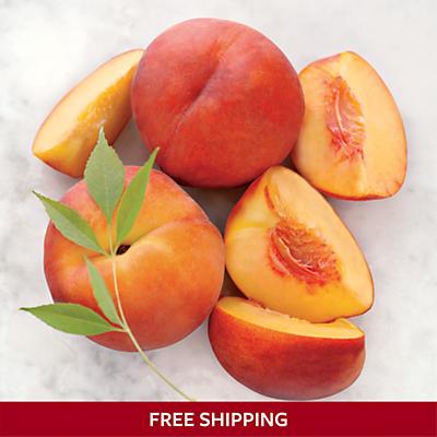 Organic Oregold® Peaches