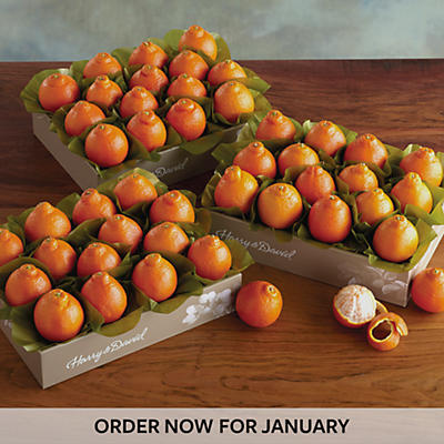 Cushman's® HoneyBells - Three Trays
