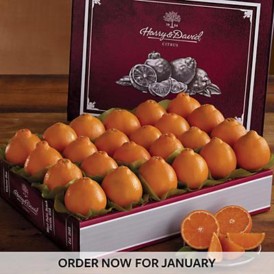 Cushman's® HoneyBell Heritage Box