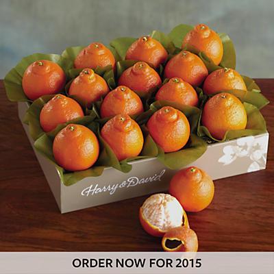 Cushman's® Florida HoneyBells - One Tray