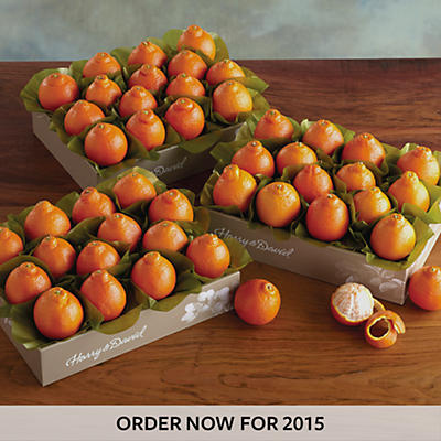 Cushman's Florida HoneyBells - 3 Box