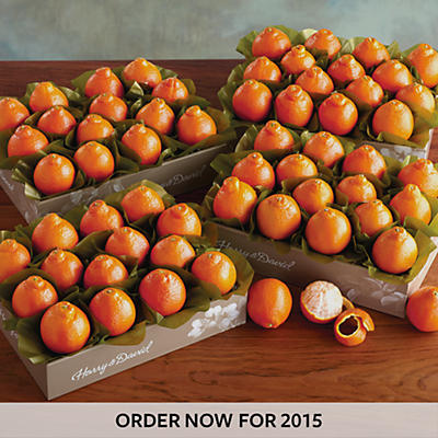 Cushman's® Florida HoneyBells - Four Trays