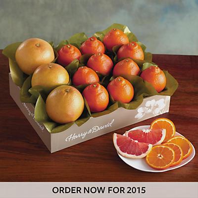 Cushman's HoneyBells and Red Grapefruit