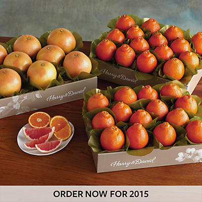 3 Boxes of Cushman's HoneyBells/Red Grapefruit