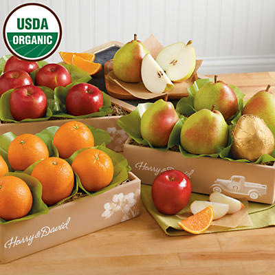 Organic Triple Treat® Fruit Classic