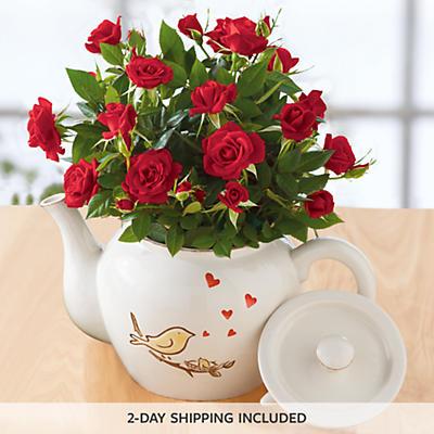 Songbird Mini Rose Teapot