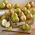 Favorite Pear Combo