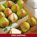 Royal Riviera® Pears