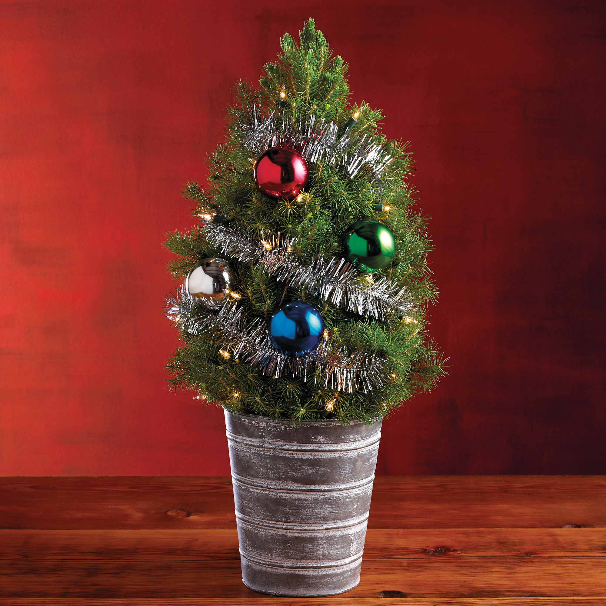 Live Decorated Christmas Trees Delivered Wreaths Best
